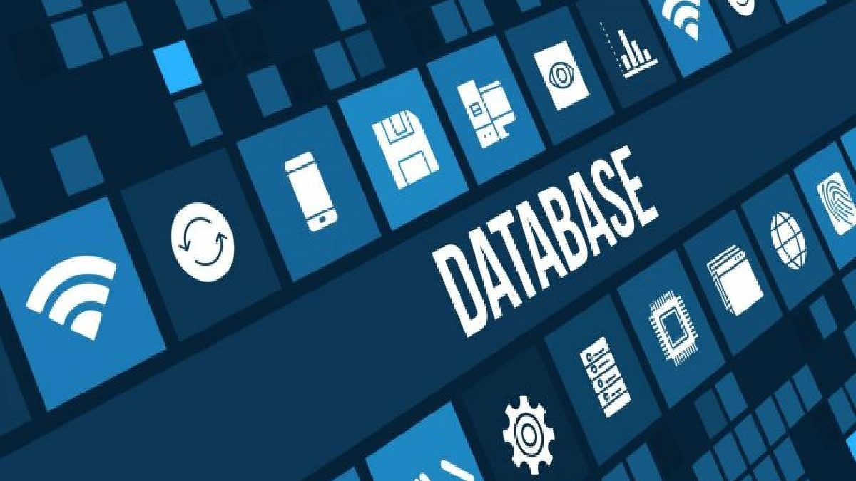 What Is A Database? – How Its Work And Its Types
